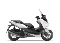 Honda NSS125i Forza Mat Pearl Cool White/black|Honda NSS125i Forza Mat Cynos Grey Metallic|Honda NSS125i Forza Moondust Silver Metallic / Matt Cynos Grey Metallic|Honda NSS125i Forza Black/pearl Havana Brown|Honda NSS125i Forza Matt Pearl Cool White / Matt Pearl Pacific Blue|
